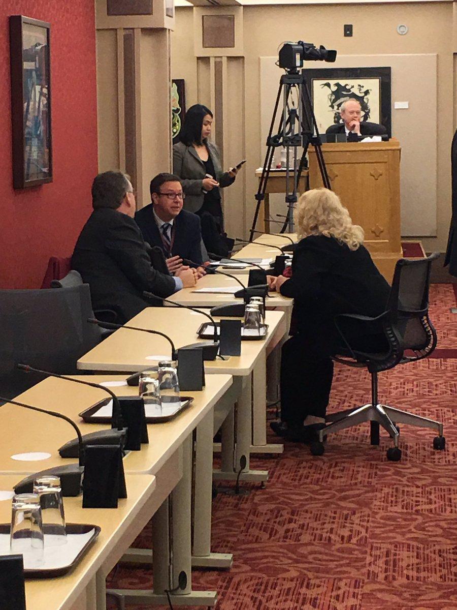 Senator Lynn Beyak is in the Aboriginal people's committee meeting. Sh...