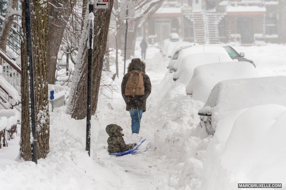 .@LeelyDessin Un dernier salut blanc de l'hiver avant de s'incliner devant le vert du printemps... en preuve cette image du 14 mars. https://t.co/g0ZnvUfTUW