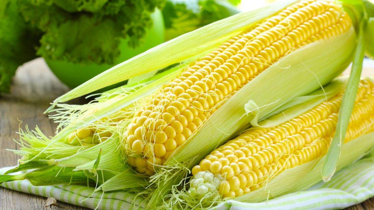 Способствует Ли Кукуруза Похудению. Можно ли есть вареную кукурузу при похудении: калории, польза и вред в борьбе с лишними килограммами