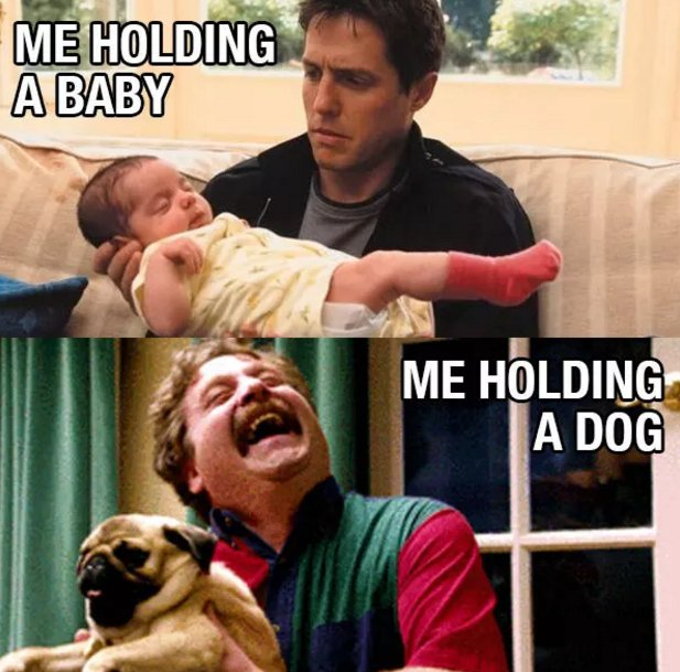 21 things everyone who loves dogs but hates babies knows