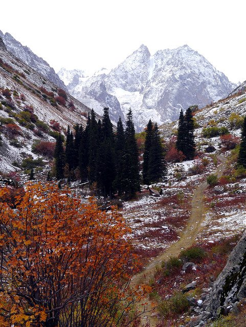 A3 Summer (and fall, when this was taken) is a great time to explore Kyrgyzstan, with plenty of hiking to be had! #SY5Chat <br>http://pic.twitter.com/W0Ff2LZP2l
