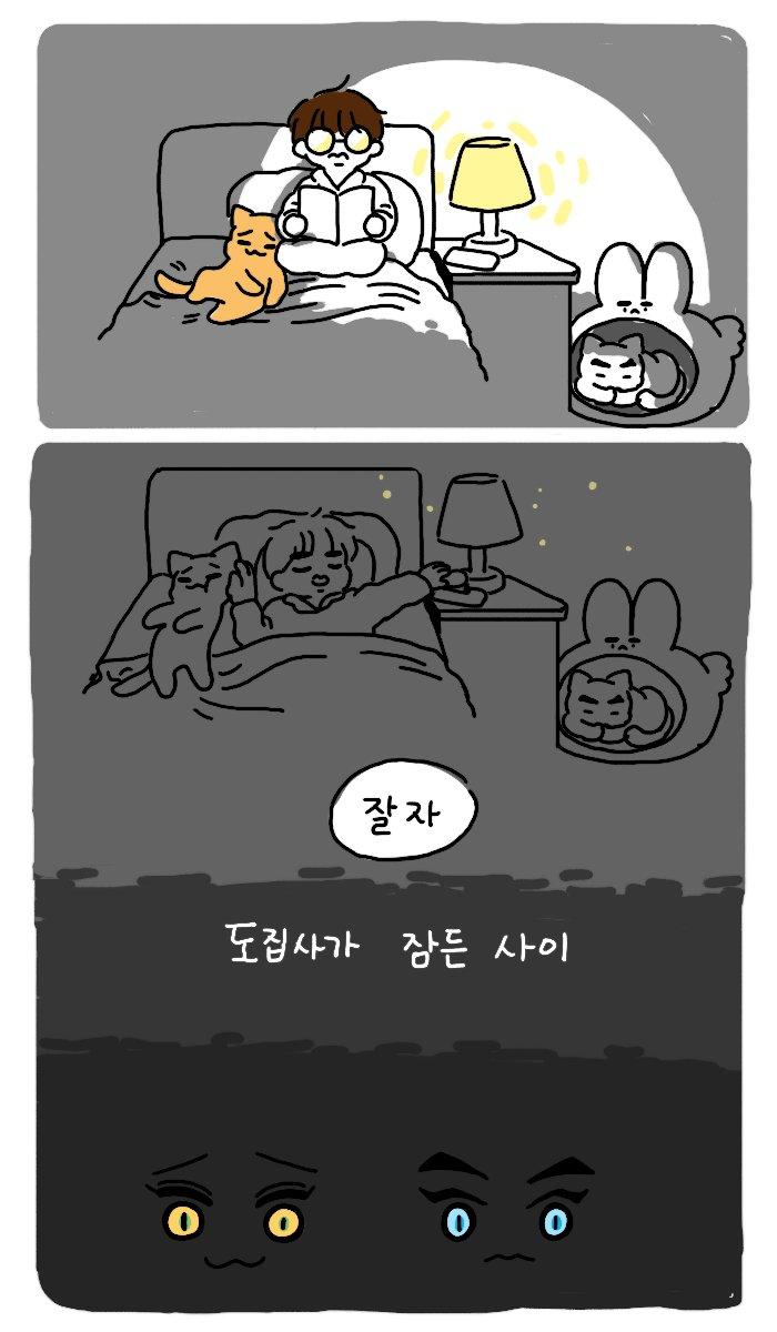 도집사와 김형제 42. 잠든사이 당신이 나를 사랑하는만큼 나도 당신을.