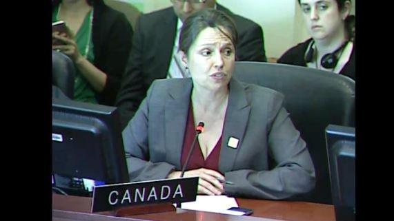 #ENVIVO | En #SesiónOEA, Canadá propone hacer seguimiento a la situaci...