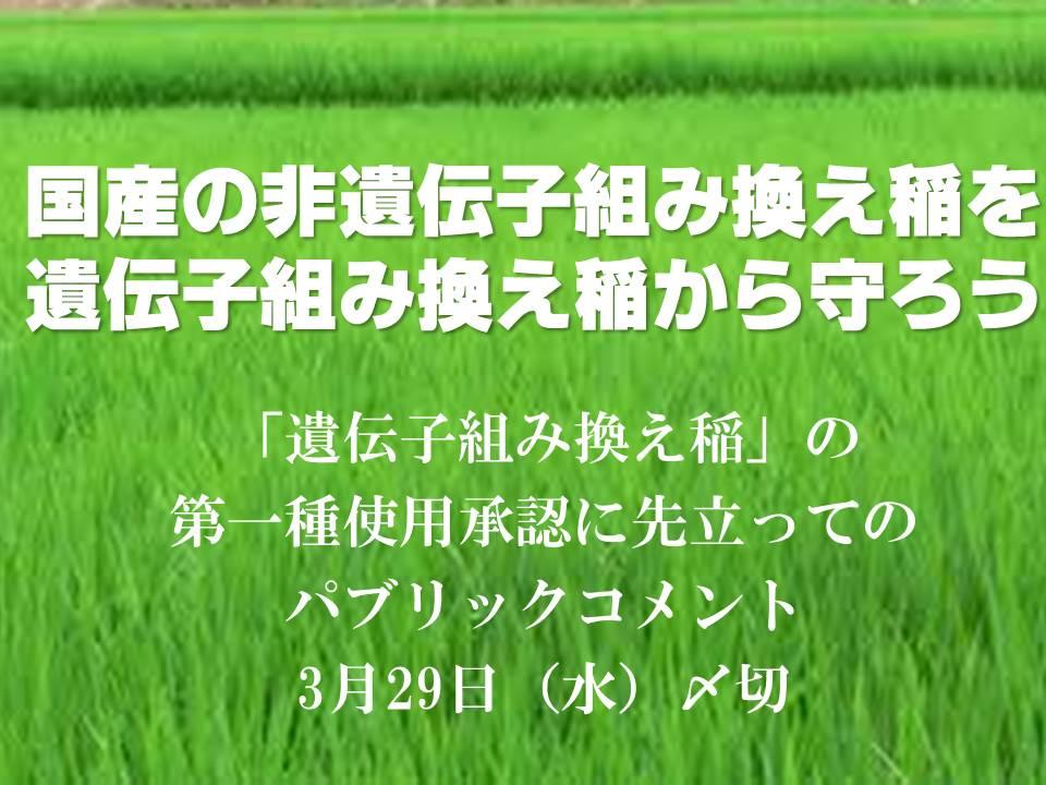 「種子法 守れ」の画像検索結果