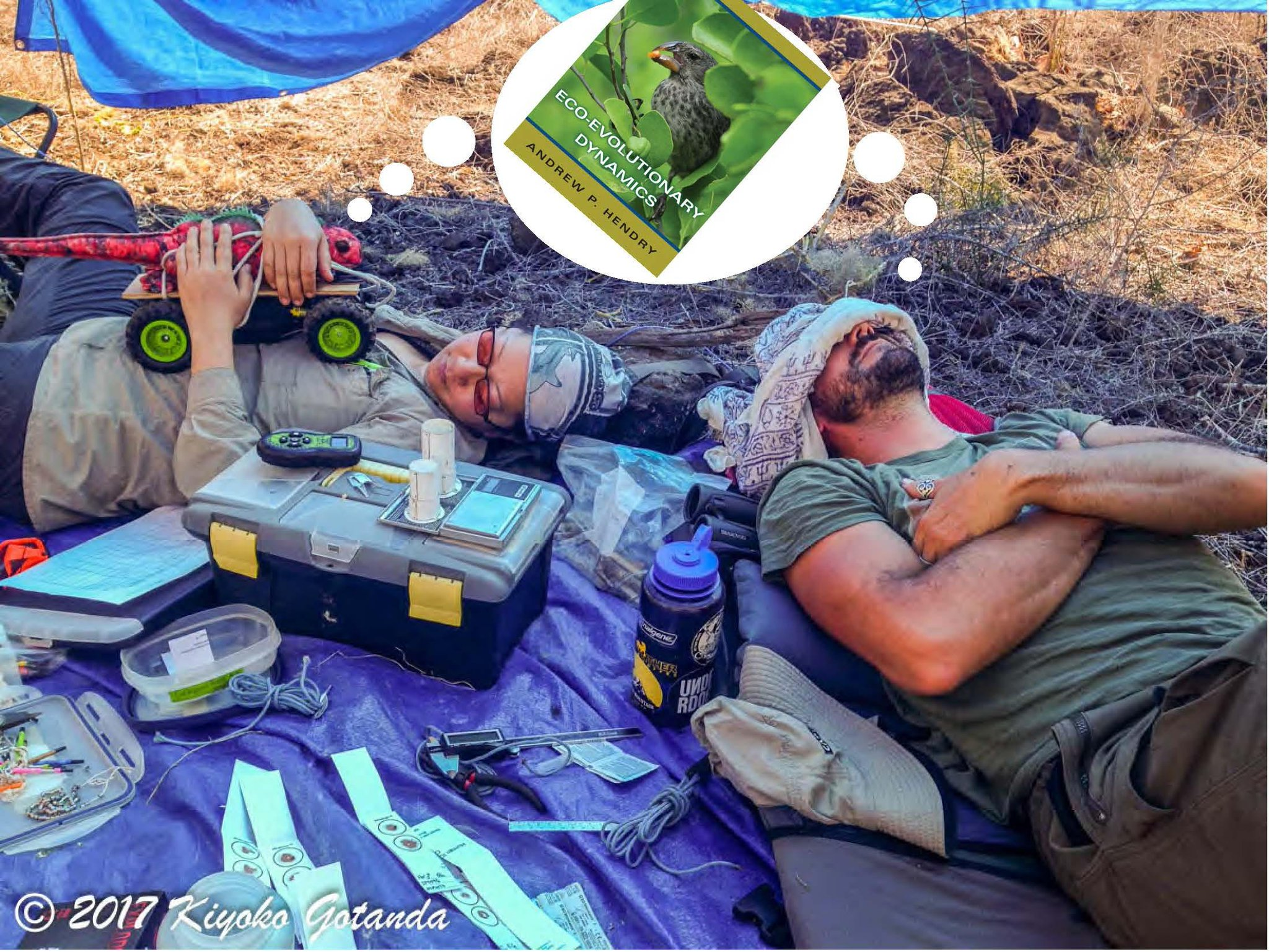 Isabela the #marineiguana+@chavecito76 #peoplewhofellasleepreadingAndrewsbook in #Galapagos are dreaming eco-evo @EcoEvoEvoEco https://t.co/CZTXwmld5F