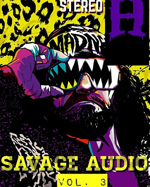 #newmusic SAVAGE AUDIO (VOL. 3) @stereo_h #BulLIONENT #comingsoon @HipHopBlogRo @HipHopDX @nydj1time @DJGuizzy<br>http://pic.twitter.com/n3fRp17FTy