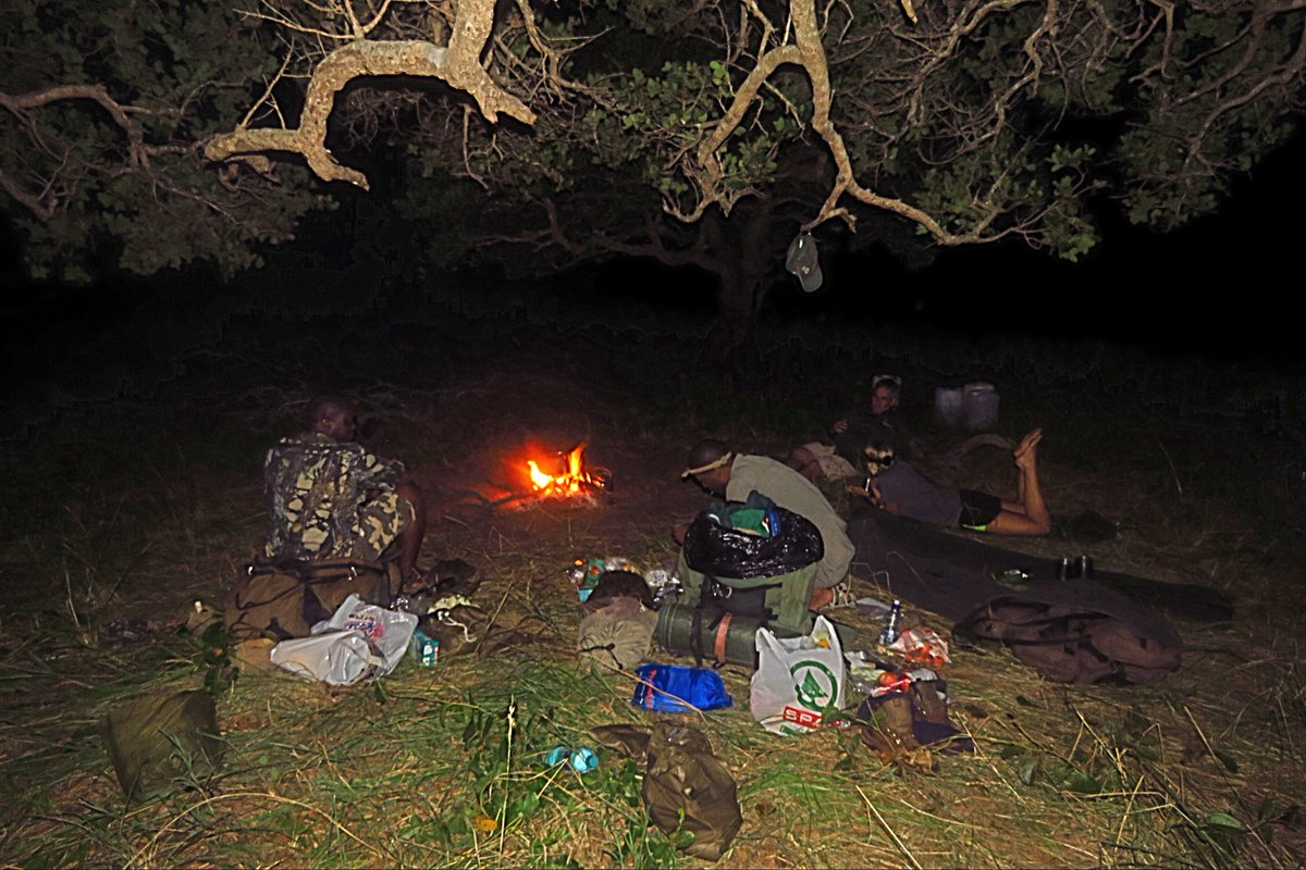 Camping under an umdoni tree is part of the #wilderness experience on a guided #trail in #iSimangaliso #WildernessLeadershipSchool<br>http://pic.twitter.com/Pof8VQbWwK