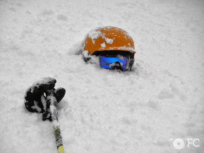 Impresionante el viaje de esquí ⛷️a Japón 🇯🇵 que se han marcado nuestros canarios favoritos [MEGAREPORT]➡️https://t.co/zgmh6IAKFO