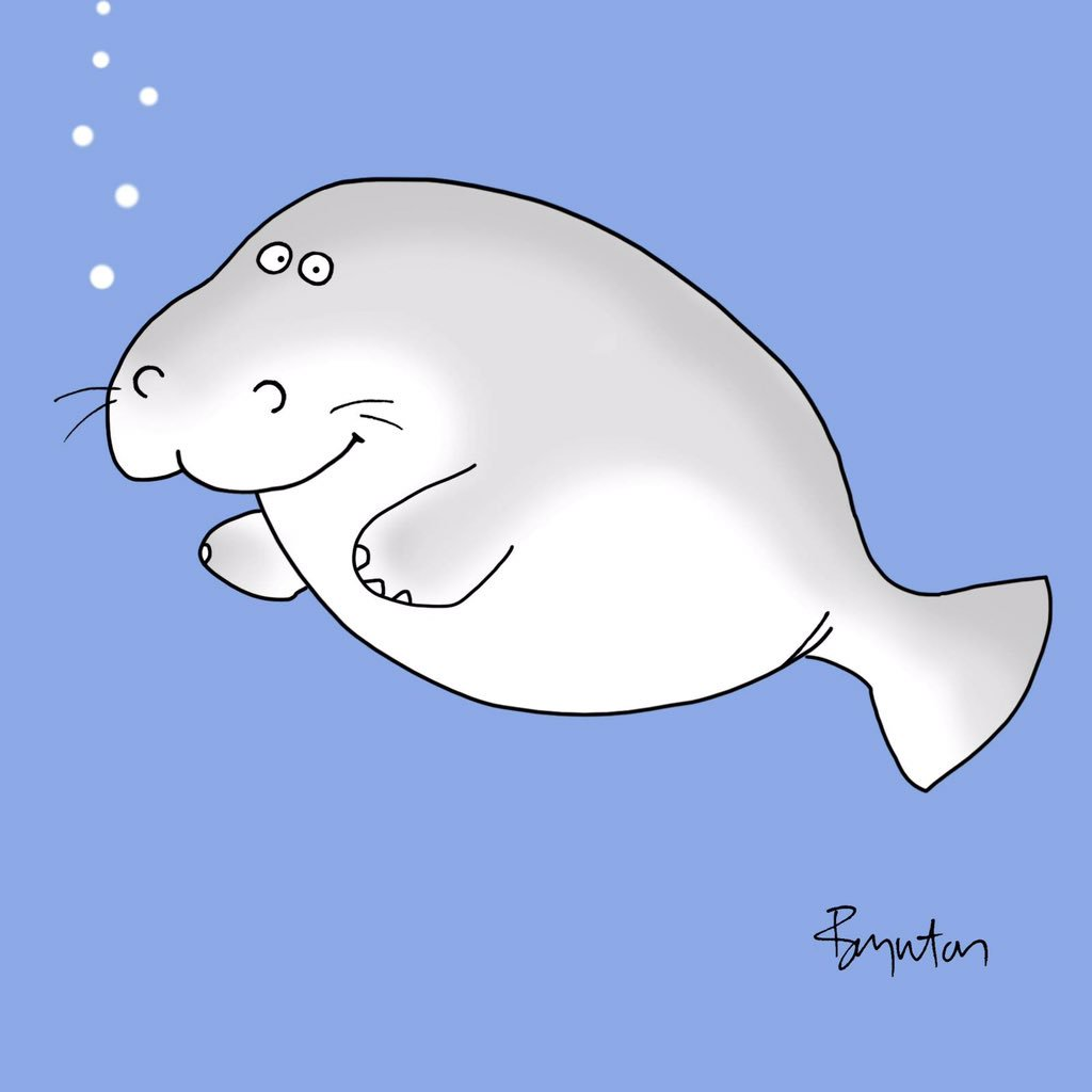 #ManateeAppreciationDay. And truly, which of us has not been guilty of...