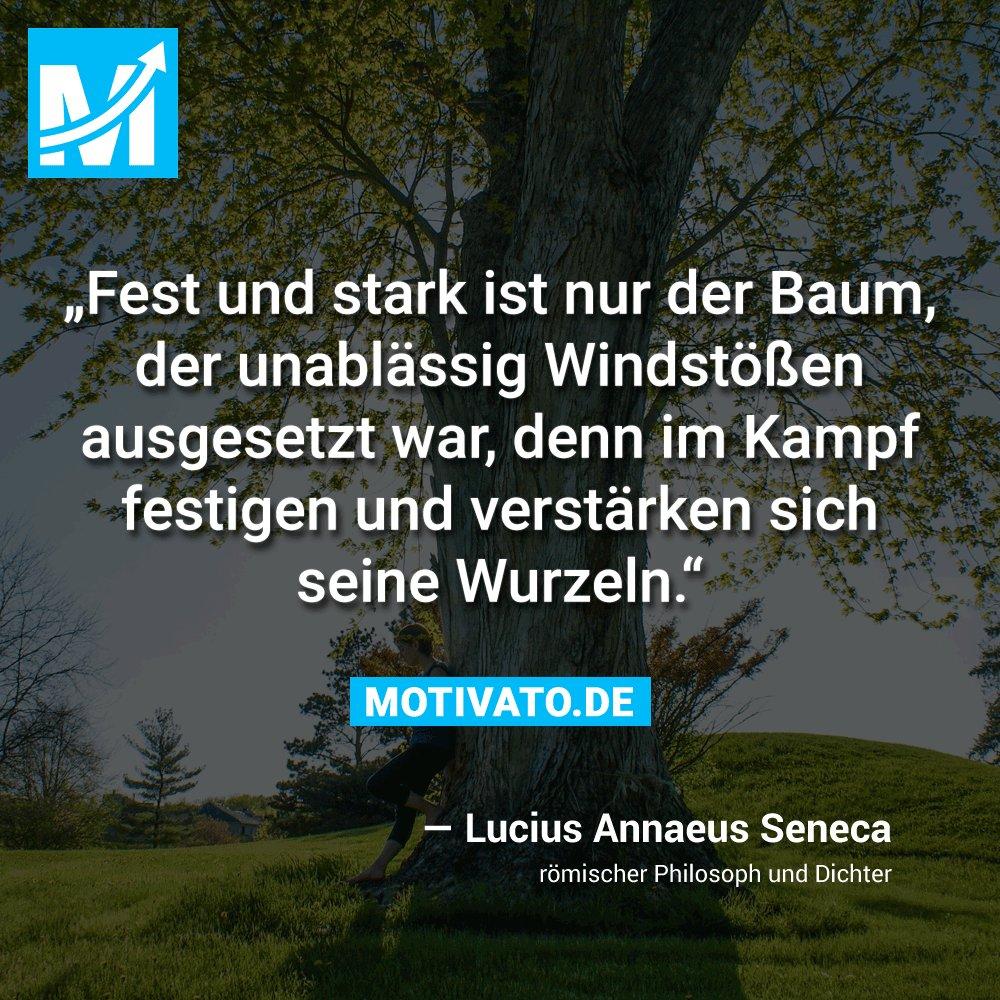 Zitat Seneca Die besten zitate Ideen
