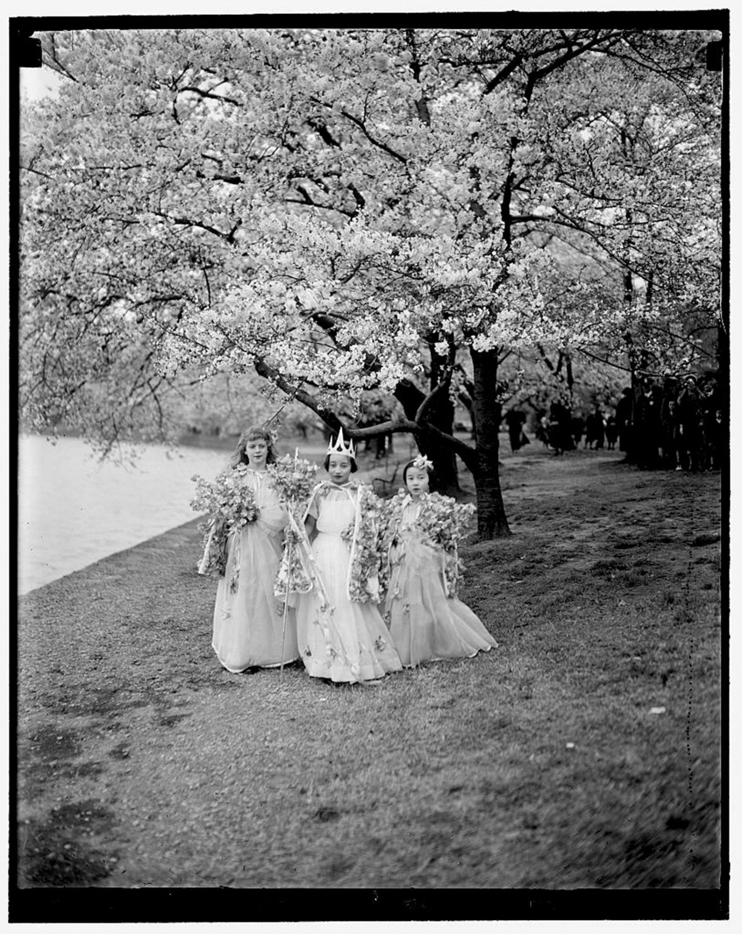 Take a look at this @washingtonpost article 'cherry blossom photography' feat. photos from our collections. https://t.co/S44rWLHu7Y https://t.co/JGwh6kLgoq