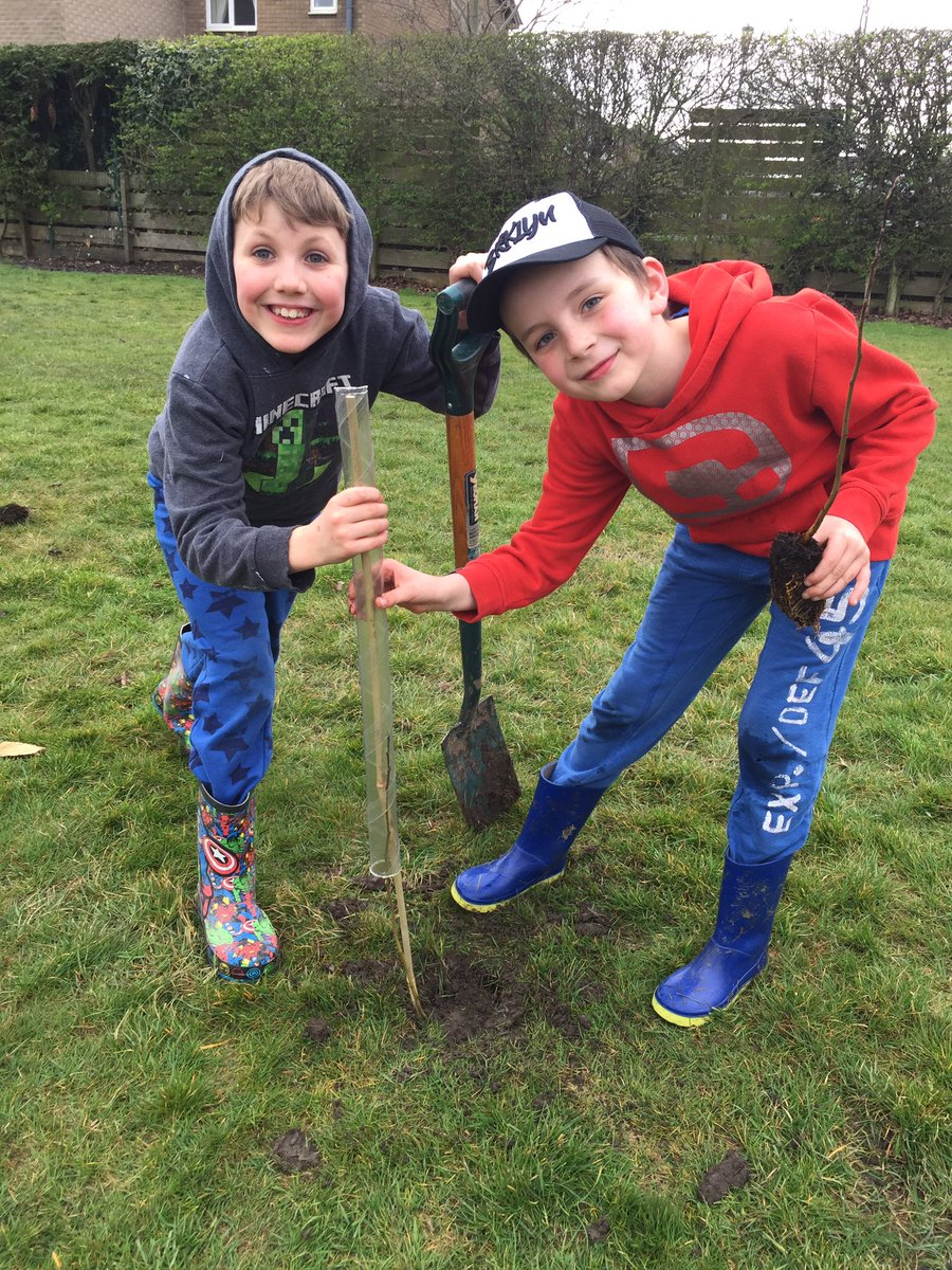 Planting trees and making pea soup with homemade garlic bread - delicious! #forestschool #primaryrocks #edchat<br>http://pic.twitter.com/ZFPaCLUHJ4