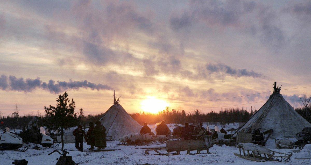 Le réchauffement de la planète perturbe la vie de l'#Arctique  http:// bit.ly/2o8wgVX  &nbsp;   via @RadioCanadaInfo #Arkhangelsk<br>http://pic.twitter.com/8KT6r4zo5m