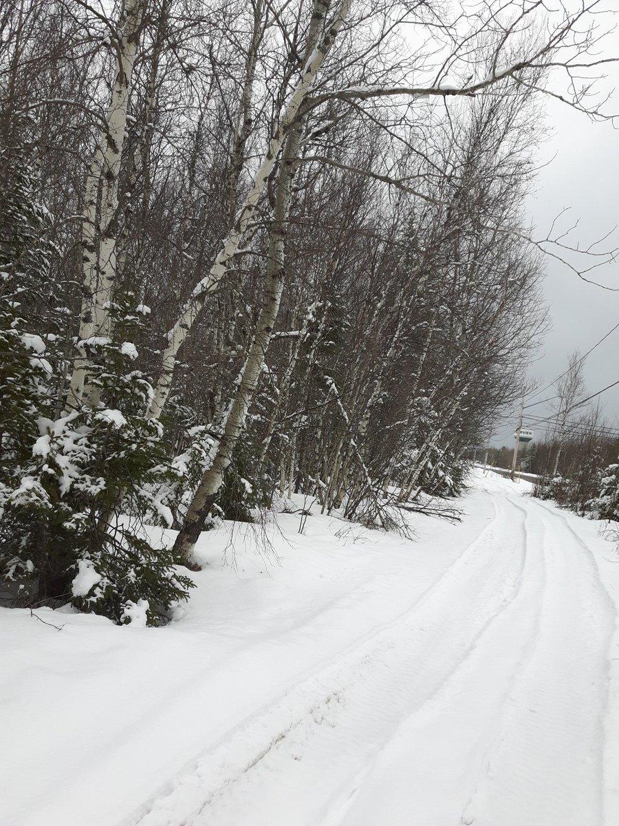 Obligatory snow pic. #winterrunning  #springday  #marathontraining #runeveryday #everydamnday<br>http://pic.twitter.com/Dz4K6OUbNY