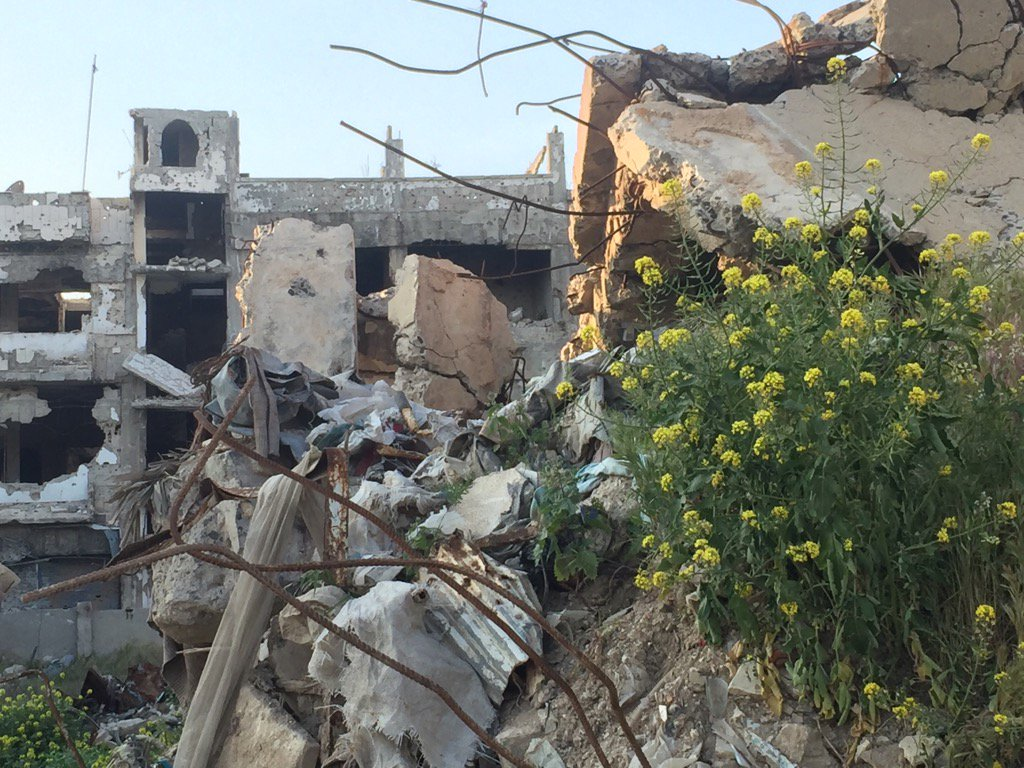 #Homs - streets in ruin but human cost far greater. So many forced to...