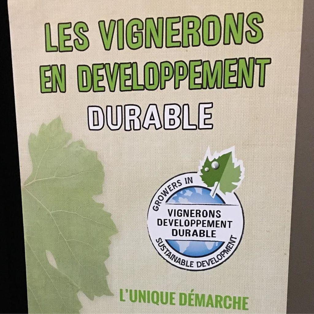 Aujourd&#39;hui et demain, je suis avec les @vinsdd, les vignerons en développement durable. #vins #vignerons #develop…  http:// ift.tt/2ob7QLg  &nbsp;  <br>http://pic.twitter.com/ydGzzBs2Co