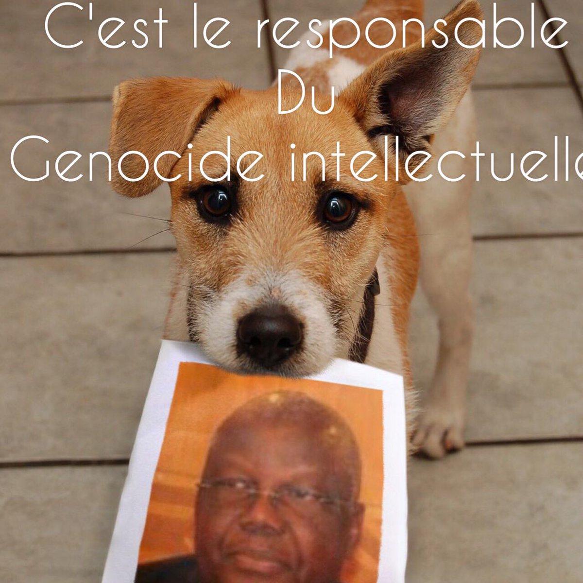 Sorcellerie politique au rendez-vous du dialogue des sourds #Gabon #PrayForGabon #World @PourNosMartyrs #NonAuDialogue @WirFuerGabun<br>http://pic.twitter.com/zFcyByg6wQ