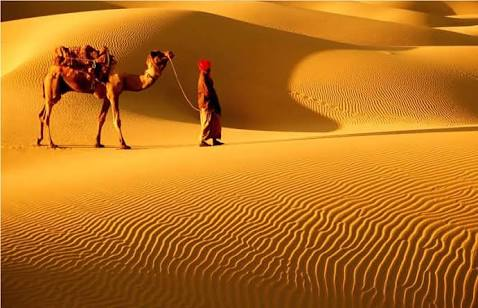 The Thar Desert, also known as the Great Indian Desert, is the world's...