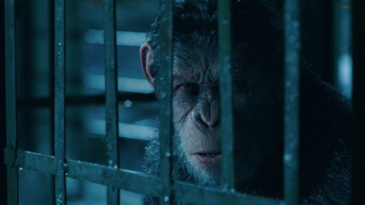 For freedom. For family. For the planet. Watch the new trailer for #WarForThePlanet, in theaters July 14. https://t.co/Vl2mEG8ktl