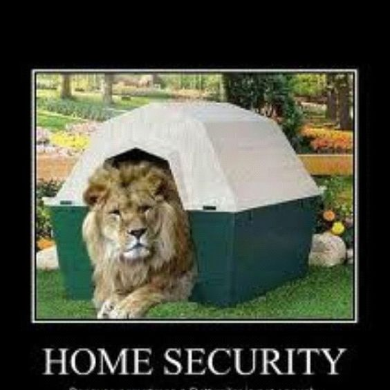 A pet lion may be out of your comfort zone! Call us for a simpler alternative to home security. 913.362.0000 #WereNotLion #HomeSecurity <br>http://pic.twitter.com/FaHgE1dcQ6