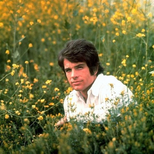 Happy 80th birthday, Warren Beatty