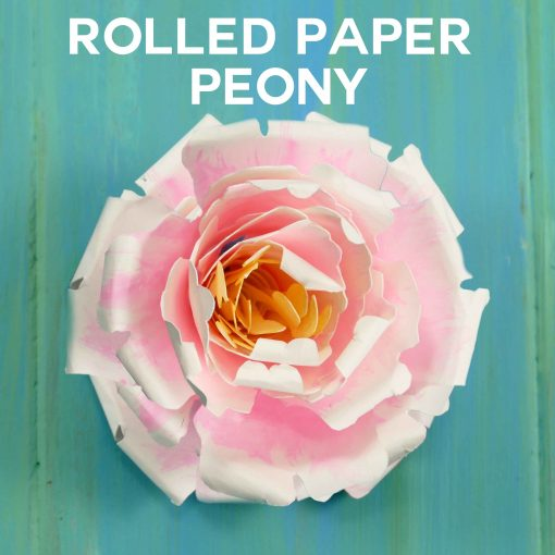 Rolled Paper Peony Flower Tutorial (Quilling)