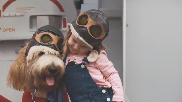 Today we are excited to unleash our new Virgin Australia Canine Crew in a world first initiative. https://t.co/d1GCIbd3qG
