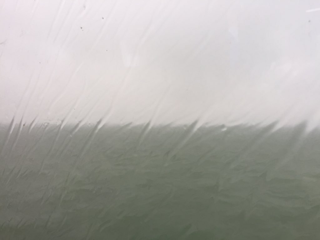 A wet, wet trip back to Hong Kong from Zhuhai. We've been so lucky with the weather! #cahht17 https://t.co/0rgdfH9xqj