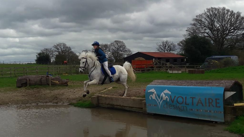 Littleton Manor EQ (@LittletonManor)
