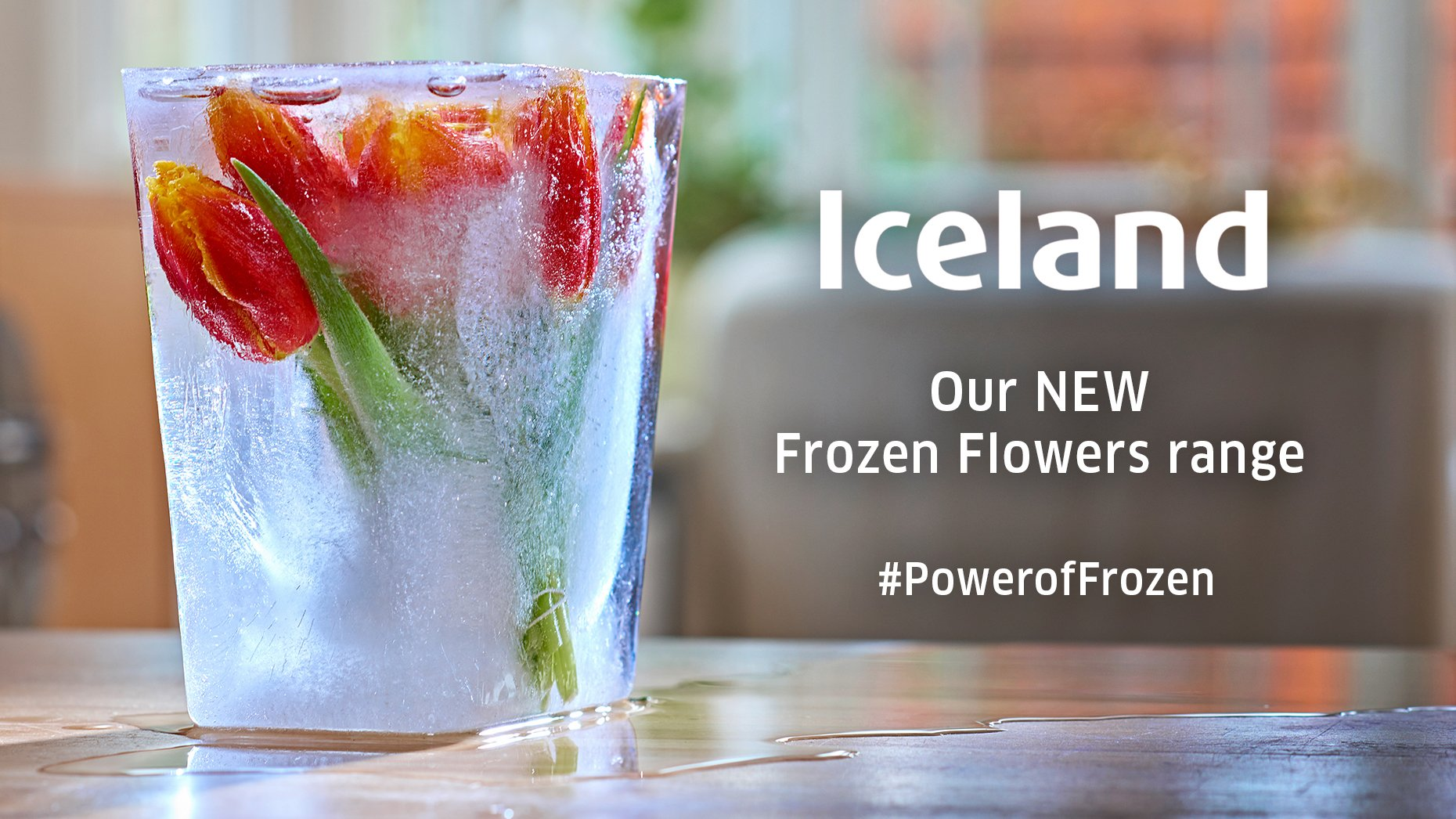 """Iceland Foods ️ on Twitter """"Flowers fresh as the day they were picked"""