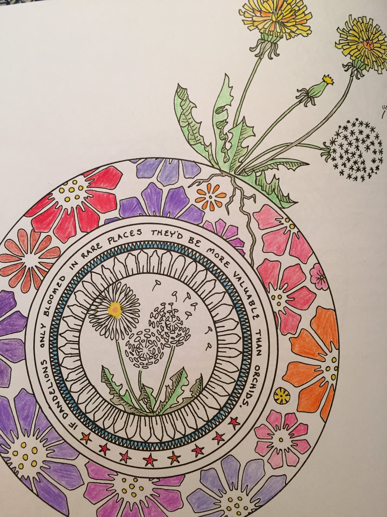 First page colored from @TheBloggess #YouAreHere  Dandelions are a blessing that spread with a wish. https://t.co/EFaKxEdJAK