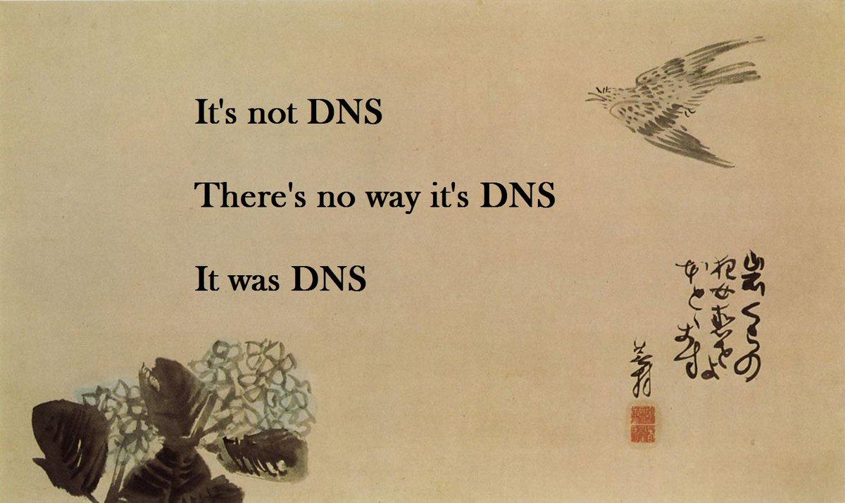 It's always DNS. #HappyFriday https://t.co/E233vpR88m