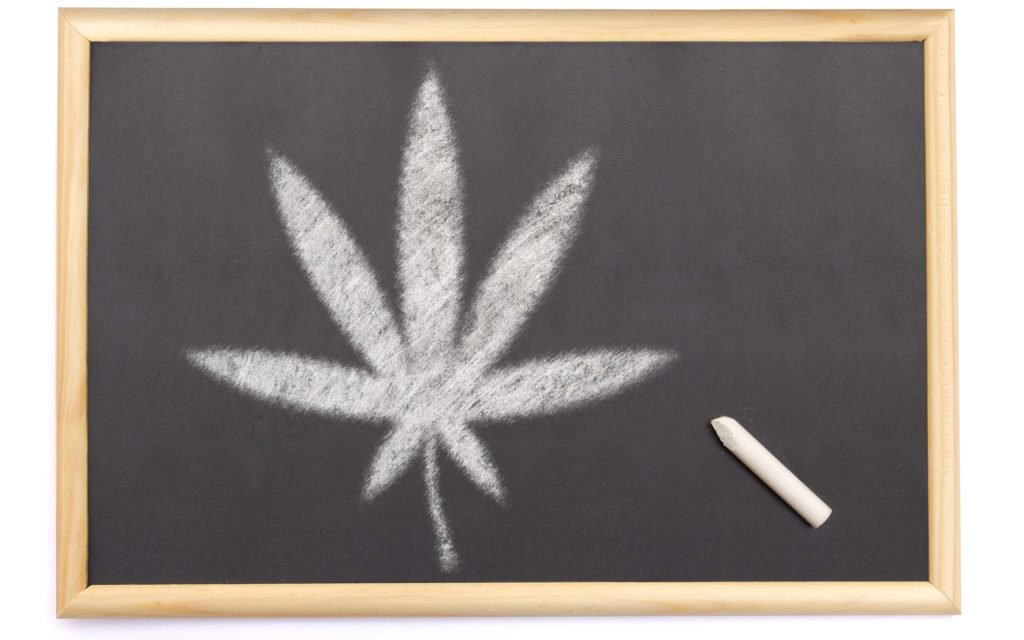 Poll: Have Marijuana Laws Affected Your Education? – High Times