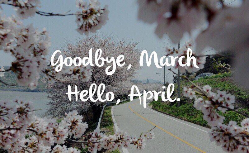 Картинки прощай март, днем дипломата