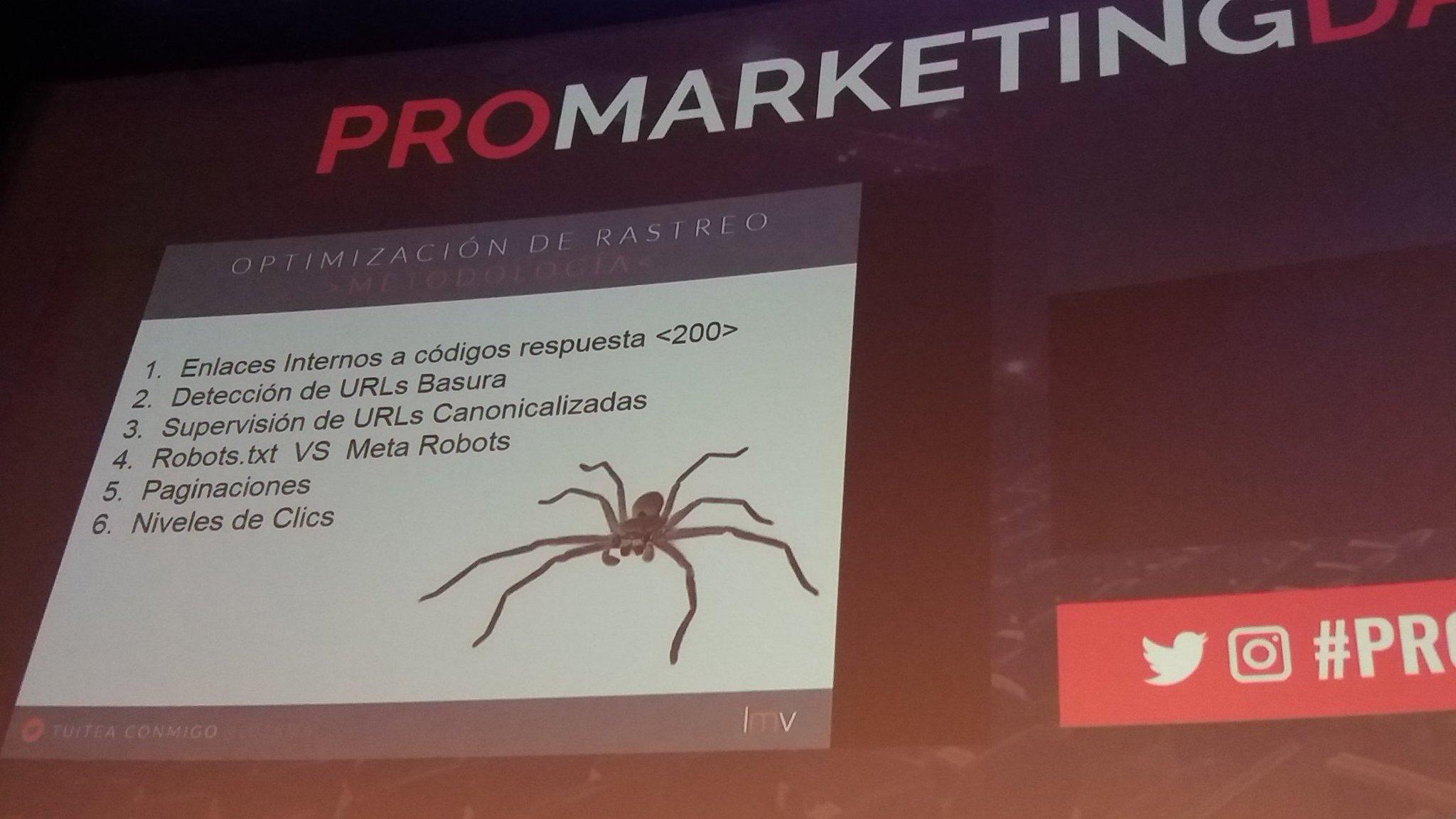 @Lu1sma Metodología para optimización del rastreo 🐜 #ProMarketingDay https://t.co/VafCrwck0P