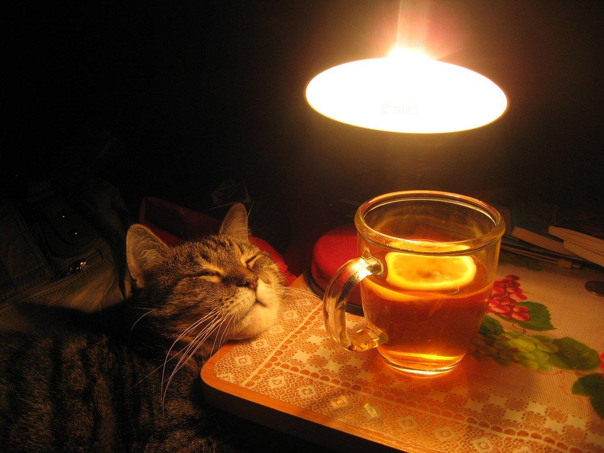 Вечерний чай картинки прикольные