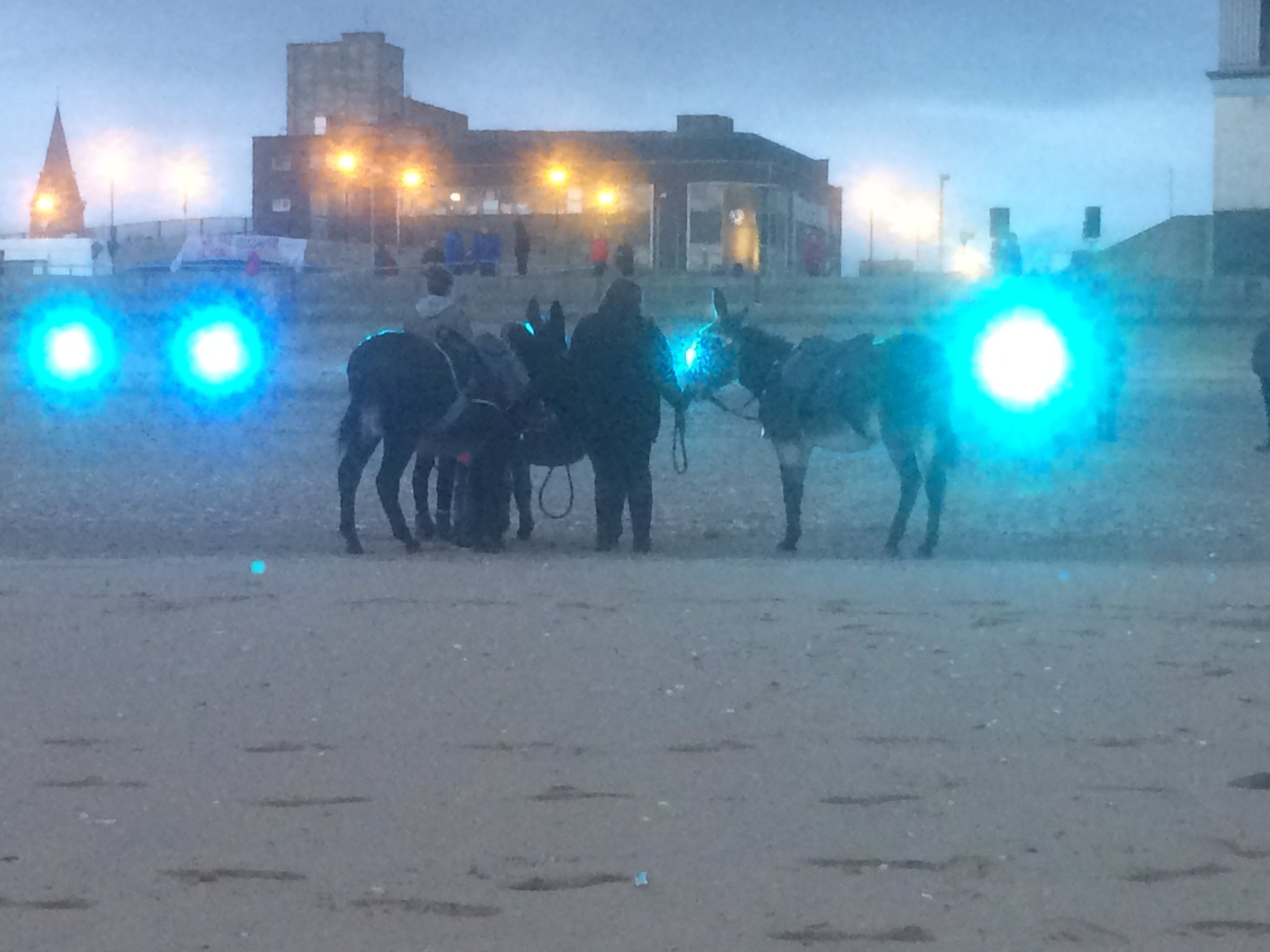 Wonderful show from @NTWtweets tonight: sand and soil, roots and belonging... oh, and seaside donkeys too #Rhyl #LiftedbyBeauty https://t.co/sIKbkNPSLR