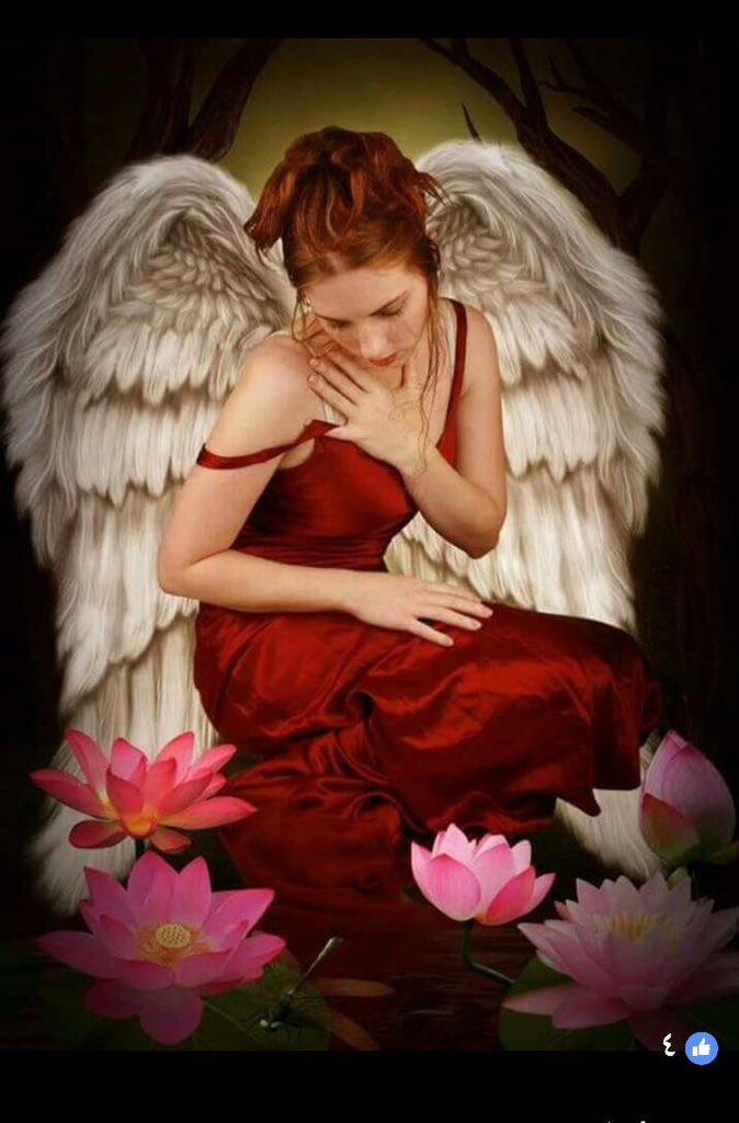 *** ANGELES *** - Página 6 C8_FG7NUQAAvcYa