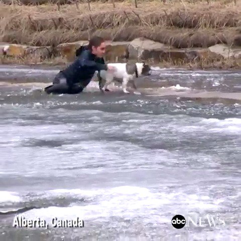 Camera crew in Alberta, Canada captures man leaping into frozen pond to save his dog.