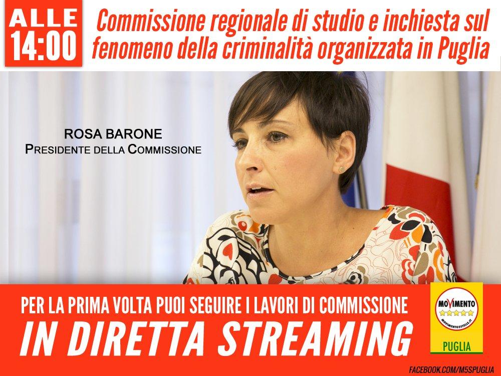 Giulia sarti giuliasarti86 twitter for Camera dei deputati diretta streaming