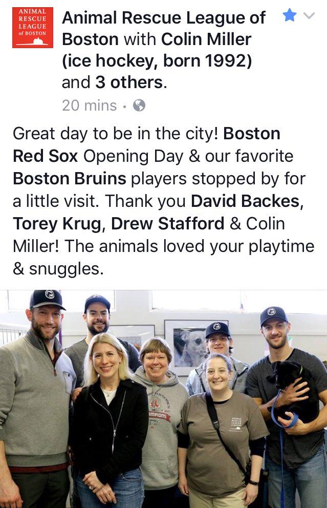 Love these guys! #Bruins @ARLBostonRescue #AdoptDontShop 👍🏼