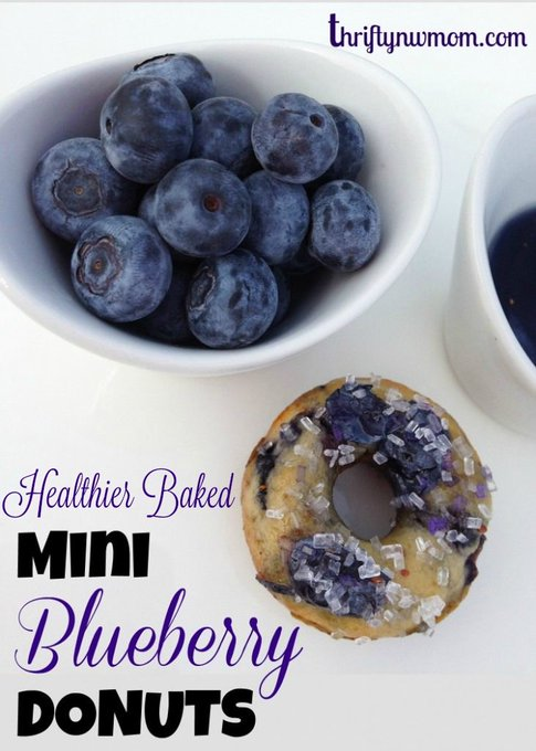 Mini Blueberry Donut Recipe (Baked not Fried)!