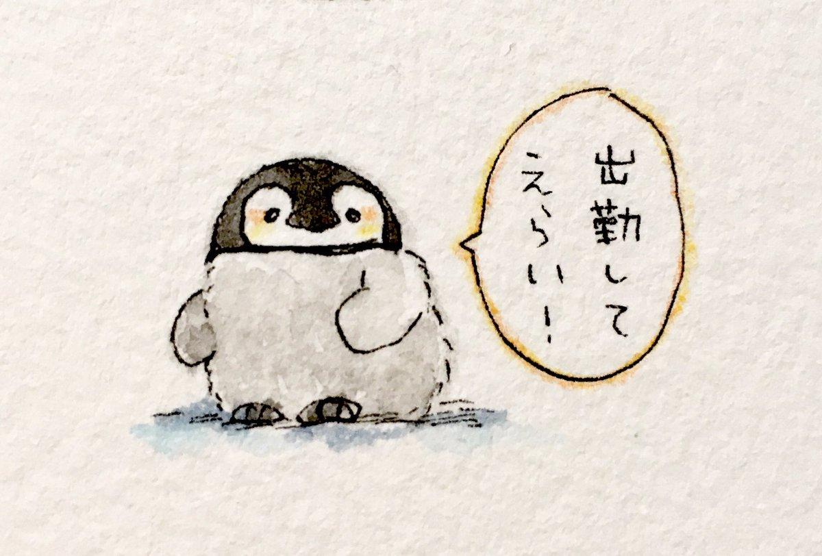 肯定ペンギンのあかちゃん