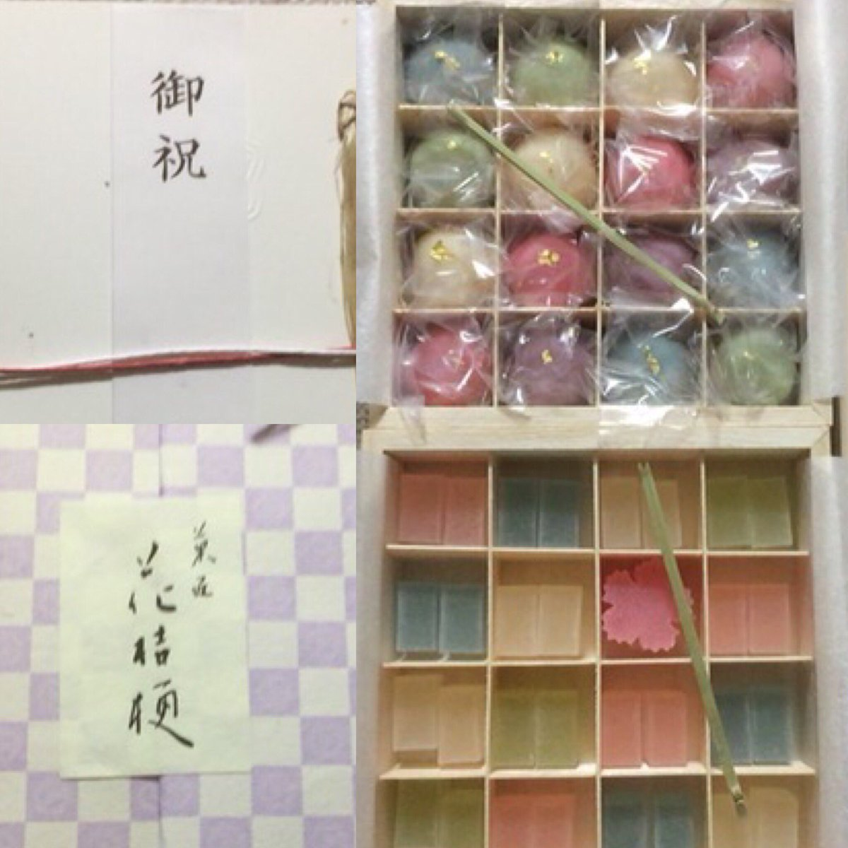 名古屋 花 桔梗