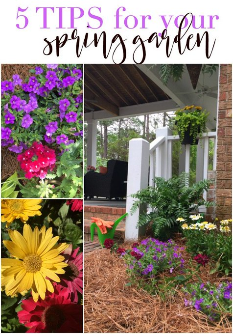 5 Tips for Your Spring Garden