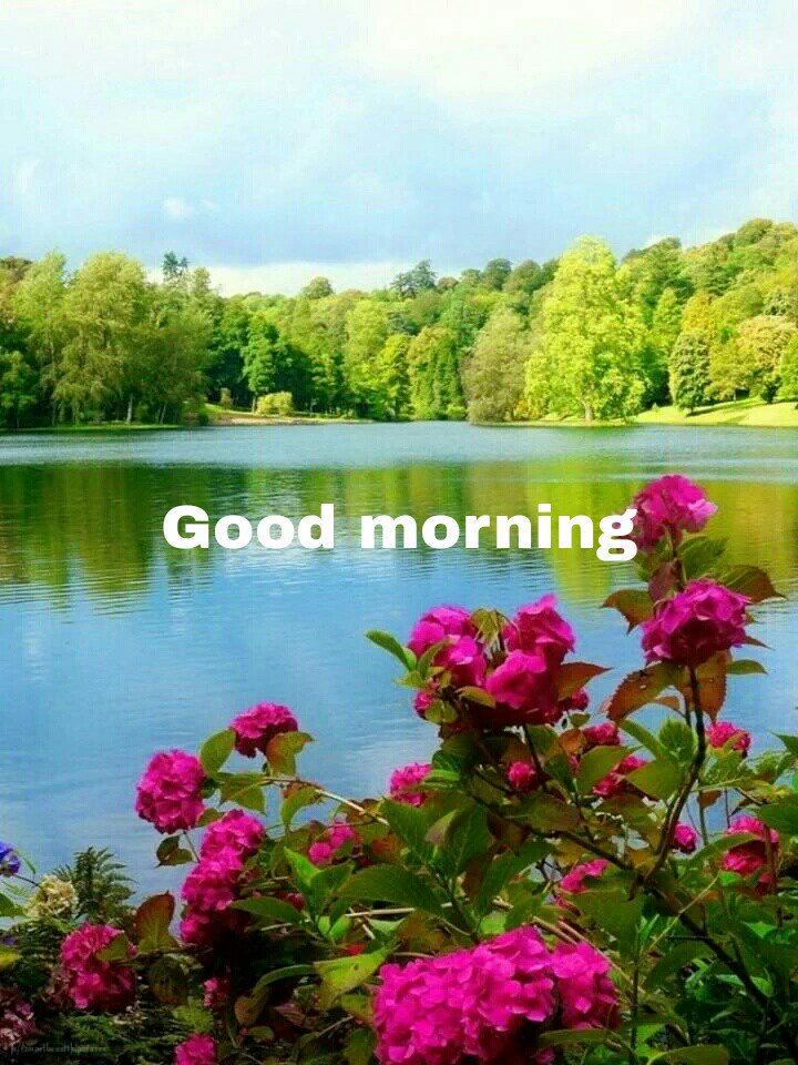 Narandra K Sharma On Twitter Good Morning My All Dear Friends Have