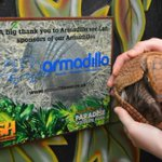A huge thank you to @armadillosec for #sponsoring our ZSH charity launch over the weekend and our Armadillos Dr Mambo and Charlie (pictured)