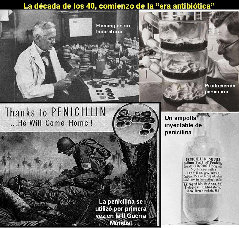 Se estima que el descubrimiento de Fleming ha salvado 200 millones de vidas desde que se usó por primera vez en 1942 #microMOOCSEM2 https://t.co/4hake9Xm9Q