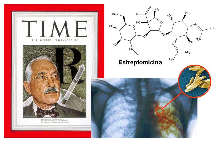 La estreptomicina de Schatz y Waksman (1943) fue el primer antibiótico útil contra la tuberculosis #microMOOCSEM2 https://t.co/Av2GgS9JsS
