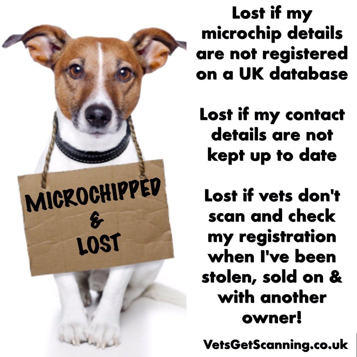 Dog owner dating uk
